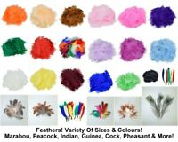 Feathers Marabou Peacock Feather Indian Plume Costume Craft Fluffy 25 Colours
