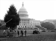 Photo. Planting The 1964 White House Christmas Tree