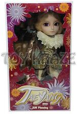 JUN PLANNING TAEYANG CAVALIE F-919 ANIME FASHION PULLIP MUSKETEERS COSPLAY DOLL