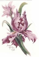 Hawley Iris Pink Flower Select-A-Size Waterslide Ceramic Decals Xx