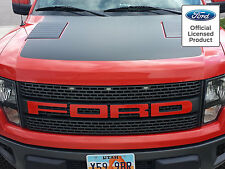 FORD RAPTOR F-150 GRILL LETTER STICKERS DECALS 3M 1080 COLOR FORD LICENSED 10-14