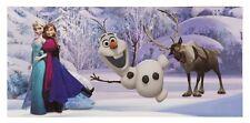 Bild Disney Frozen Eiskönigin Olaf Elsa Junge Mädchen blau 33x70cm