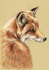 WILDLIFE  *  FAUNA   **  FOX   **  FUCHS  **  A4     LIMITED   PRINT