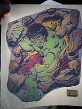 The Incredible Hulk Marvel Comics 1970's Vintage Americana Iron On Transfer, B-4