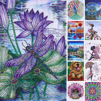 5D DIY Diamond Painting Drill Embroidery Cross Stitch Kits Art Special Shape NEW
