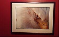 "Thomas Mangelson ""Dreamcatcher"" Framed Print"