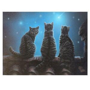 Lisa Parker, Kleine Leinwand, Bild, Leinwanddruck, Katze, Star