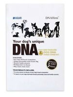 Dog DNA - Canine Breed Identification Test - Home Cheek Swab Kit