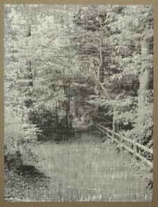 Katsutoshi Yuasa snapshot #2 Holzdruck 2008 handsigniert