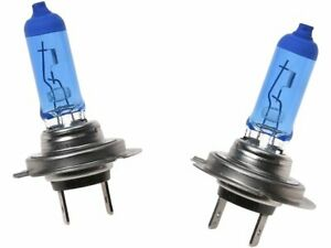 API Cornering Light Bulb fits BMW 535i GT xDrive 2011-2015 57SKZS