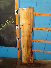 """#9414   2 3/16"""" THICK   spalted maple live edge slab"""