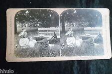 STA803 Scene de genre 2 femmes banc nature jardin albumen Photo stereoview 1900