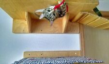 Cat Wall Mounted Perch with Passage Hole Tree Furniture FREE SHIPPING
