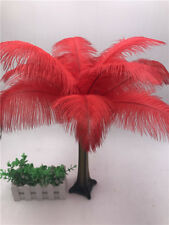 10pcs high quality ostrich feather 6-16inches/15-40cm wedding / party decoration