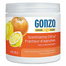 Natural Magic Odor Absorbing GEL Scentillating Citrus 14 Oz Jar Wmn4119dea 4041ea