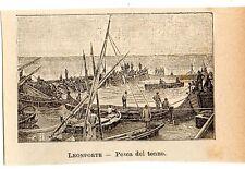 Stampa antica TONNARA pesca del tonno presso Trapani Sicilia 1905 Old print