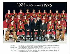 1975 CHICAGO BLACK HAWKS 8X10 TEAM PHOTO ROTA HULL  HOCKEY ILLINOIS NHL MARTIN
