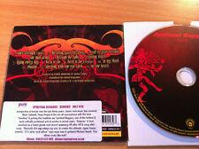SPIRITUAL BEGGARS ~'DEMONS'~ Rare PROMO Only CD 2005~SWEDISH STONER ROCK~NEW
