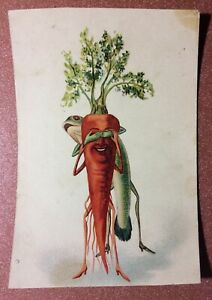 Tsarist Russia Art Nouveau postcard 1909s Humanized CARROT hide and seek FISH