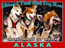 Iditarod Trail Dog Sled Race Alaska United States Travel Advertisement Poster