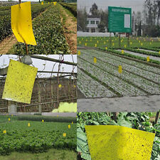 Outdoor Yellow Sticky Glue Flying Pest Insect Papers Traps Catchers Bugs 1/5PCS