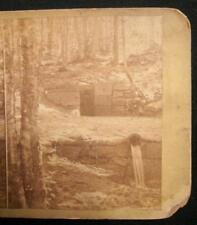 Stone Wall & Drain In Woods Unidentified Stereoview Possibly Pennsylvania Area O