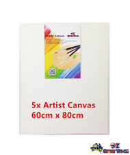 60x80cm Blank Artist Canvas Heavy Duty Canvas Paints 16mm Thickness 5pcs OZ