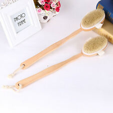 Novelty Natural Bristle Dry Skin Exfoliation Brush Massager Bath Shower Scrubber