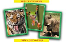 Topps National Geographic Animals Single Stickers (2019) Buy 4 Get 10 Free