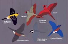 Skyflight Songbirds Birds Hanging Baby Mobile Educational Classroom Decor Art
