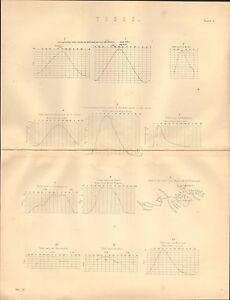 1868 Aufdruck ~ Gezeiten ~ 12 Verschiedene Beispiele Für Tidal Kurven Hing Road