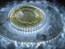 600led BIANCO FREDDO 5m LED STRIP 12V CON ALIMENTATORE
