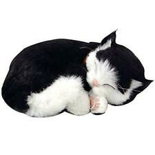 Black and White Shorthair Cat Animated Pet
