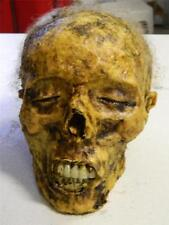 "HALLOWEEN HORROR MOVIE PROP - Realistic Human Corpse Head ""THE SLEEPER"""