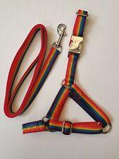 Llama Alpaca Halter & Lead  20mm Rainbow Pattern Webbing 4 sizes