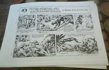 Lot of 23 Vintage Burne Hogarth Tarzan Sunday page black & white proofs 1948