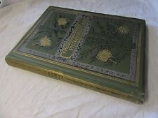 1882 A PICTURESQUE TOUR in PICTURESQUE LANDS - Stunning Illustrations