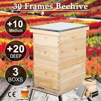 30-Frame Size Beekeeping Kit  Frame Beehive 20 Deep 10 Medium 3 Layer tet