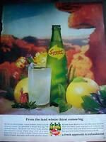 1965 Carton SQUIRT SODA Where Thirst Comes big Ad