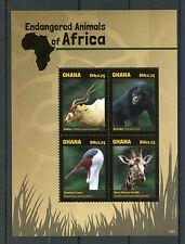 Ghana 2014 MNH Endangered Animals of Africa 4v M/S I Birds Addax Bonobo Giraffe