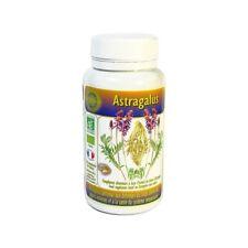 Astragale astragalus membranaceus bio 60 comprimés