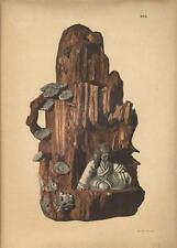 Stampa antica GIAPPONE JAPAN STYLE scultura con figura 1885 Antique print