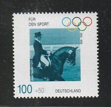 Horse, Equestrian horse,