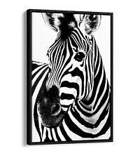 ZEBRA HEAD FLOAT EFFECT CANVAS WALL ART PIC PRINT GRAFFITI- BLACK & WHITE