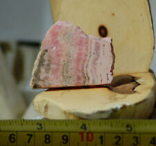 Argentine Rhodochrosite Lapidary heel Slab 1.4 oz (40 gram)