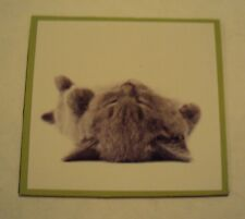 "NEW ADORABLE UPSIDE DOWN GREY KITTY FRIDGE' MAGNET APPROX' 2 1/2"" X 2 1/4"" SWEET"