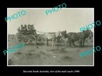 OLD LARGE HISTORIC PHOTO OF TARCOOLA SOUTH AUSTRALIA, THE MAIL COACH c1900