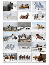 Horse Christmas Cards - Pack Of 18