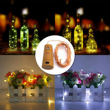 Battery Operated String Fairy Lights Silver Copper Wire Lamp EL Neon LED Lights