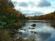 Maine water front 16.2 acres land river timber Owner financing